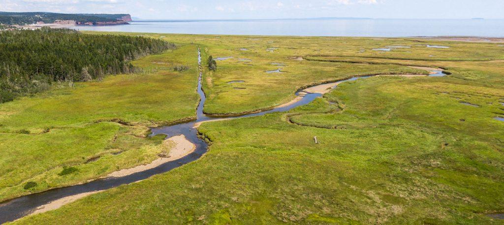 Marais salant littoral