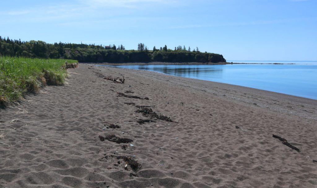 McLeod's Beach